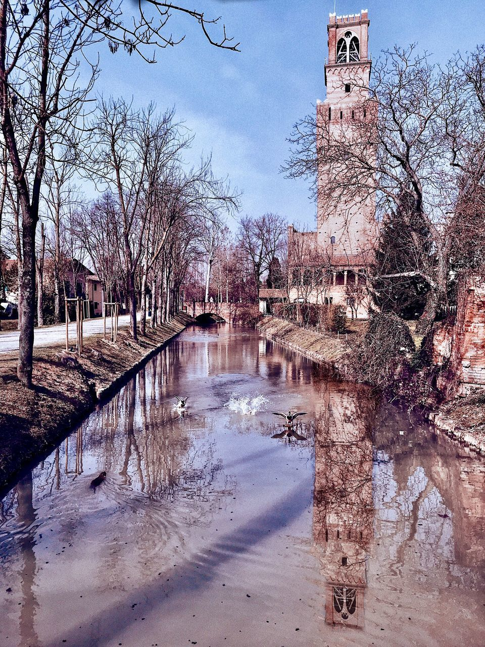 water, tree, architecture, reflection, built structure, building exterior, sky, bare tree, building, plant, nature, no people, day, winter, connection, bridge, cold temperature, river, outdoors