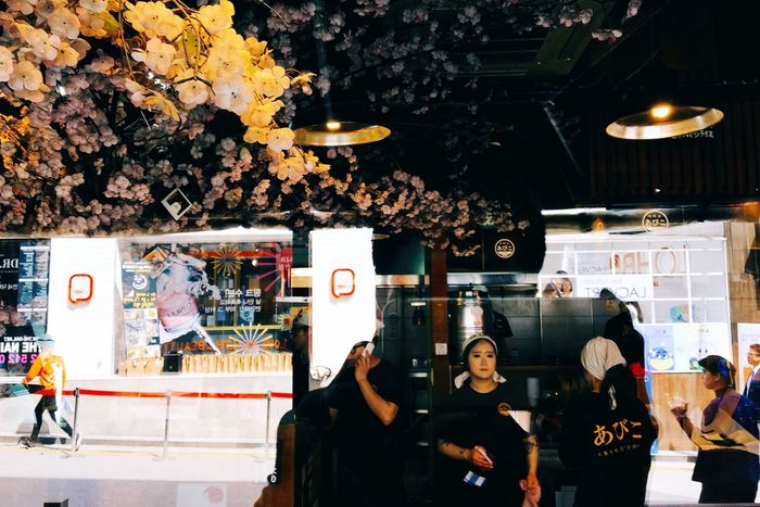 Showcase April Restaurant Spring Through The Window Cherry Blossoms Flowers Tree