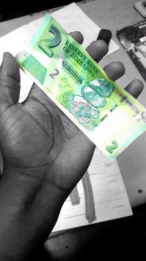 Bond Notes Zimbabwe Economics