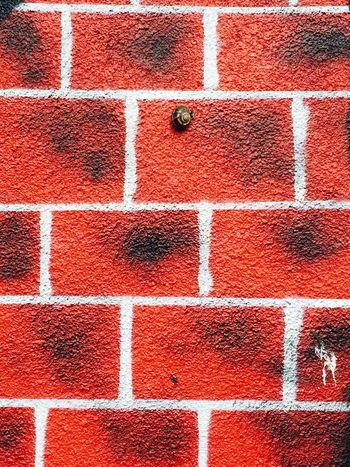 Gostivar Macedonia Reptile Wall Wallart Red Vscocam VSCO