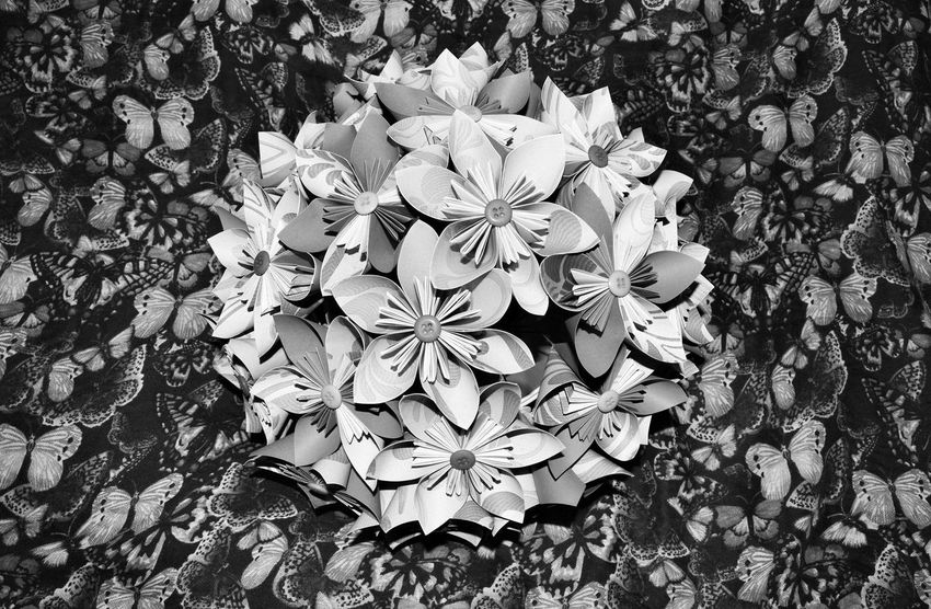 Pattern Pieces Loving Beautiful Flowers And Butterflies Eyemphotography Shot With My Nikkon Blackandwhite Photo EyeEm Nature Lover