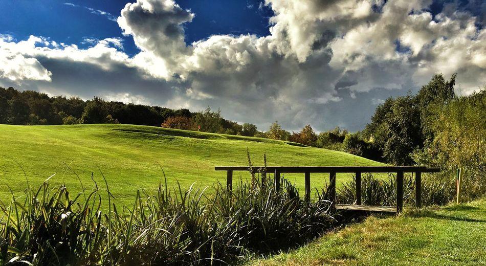 Salzgitter Bad Golfplatz Anlage Salzgitter Niedersachsen Landscape