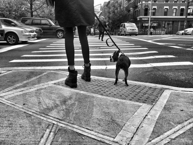 The girl with the dog. Soho NYC Streetphotography Monochrome Blackandwhite NYC Dogs Dog People Everyday Lives B&W Portrait EyeEm Best Shots Telling Stories Differently Up Close Street Photography My Favorite Photo Monochrome Photography Snap a Stranger Enjoy The New Normal Embrace Urban Life Exploring Style The Street Photographer - 2017 EyeEm Awards The Portraitist - 2017 EyeEm Awards Pet Portraits