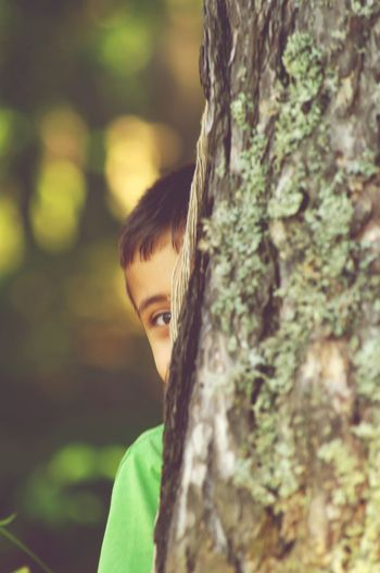 Child Childhood Tree Nature Looking At Camera Hiding From The World Hidingplace Hiding From The Camera Forest Tree Trunk Outdoors Green Green Color Green Eyes Runningaway Luminouslight