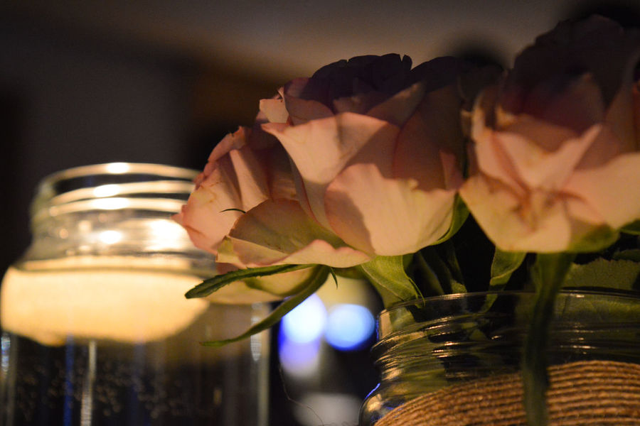 Beauty In Nature Candle Close-up Decoration Flower Flower Head Focus On Foreground Fragility Freshness Illuminated Jam Jam Jar Petal Pink Roses Roses Selective Focus