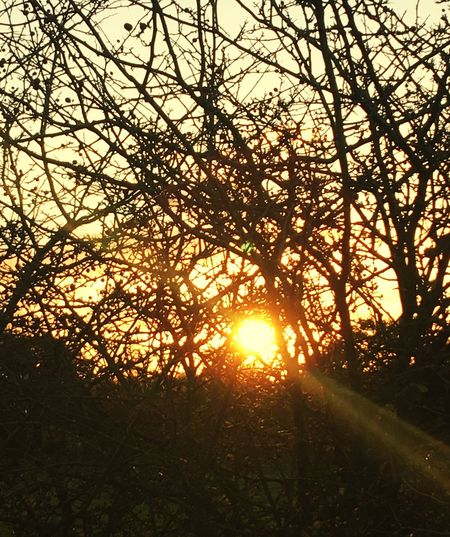 Sunset Sunlight Tranquility Tranquil Scene Beauty In Nature Perspectives On Nature Sky Landscape Sunset_collection Suset Obsession Obsession ❤❤ Postcode Postcards IPhoneography Iphone6plus England, UK National Trust 🇬🇧 Perspectives On Nature