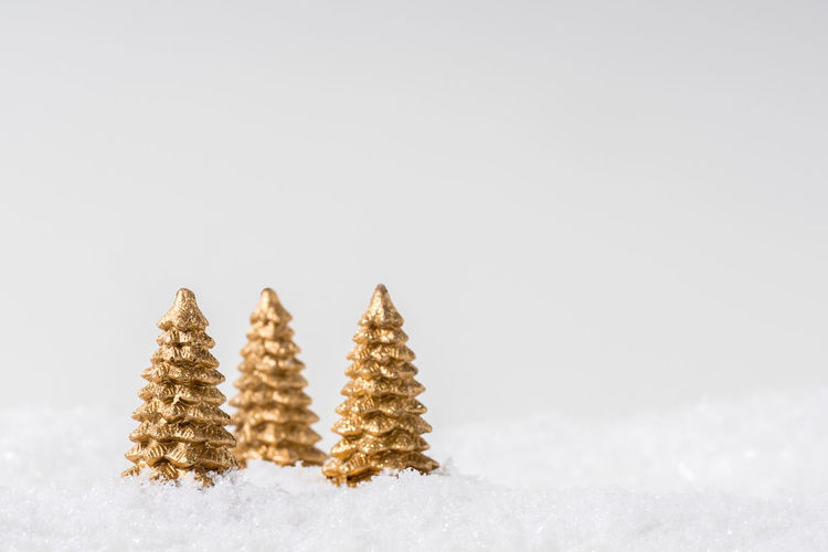 Snow covered tree against white background
