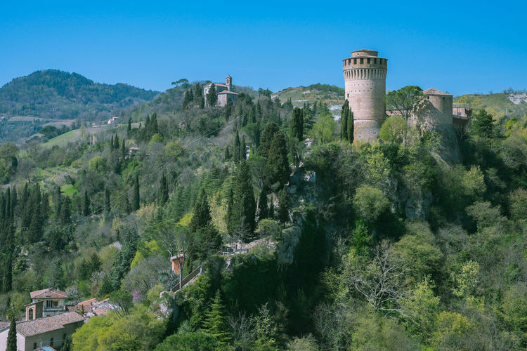 Rocca Manfrediana Tree Architecture Built Structure Plant Building Exterior The Past Sky Nature History Day No People Tower Land Mountain Environment Travel Destinations Building Outdoors Scenics - Nature Clear Sky Ancient Civilization Fortress Hills And Valleys