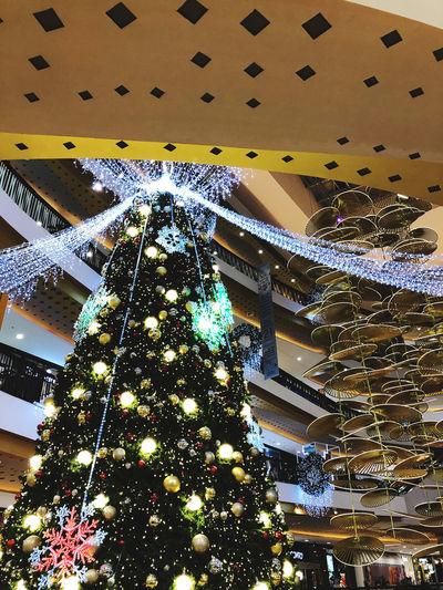 Low angle view of illuminated christmas tree