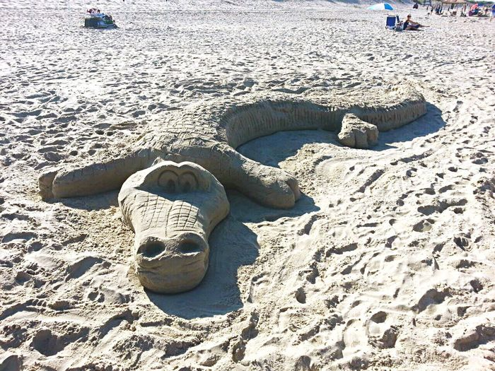 Check This Out Beach Art Sand Crocodile Cool Beach Life Beach Photography Atlantic Ocean Outer Banks, NC North Carolina Summer Enjoying Life USA