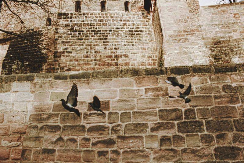 Old King Burg