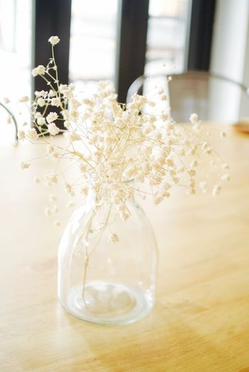 Close-up of flower vase on table in living room