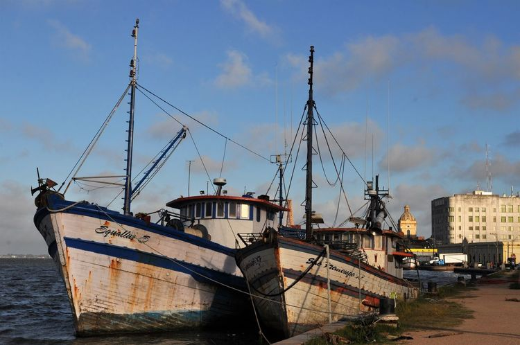 Nautical Vessel Harbor Cloud - Sky Waterfront Moored Outdoors Mast Sea Water No People Sky Mode Of Transport Transportation Sailing Ship Commercial Dock Nature Day Boat