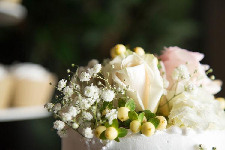 Bouquet Celebration Flower Flower Head Focus On Foreground Freshness Life Events No People Petal Rose - Flower Wedding Wedding Cake Wedding Dress White Color