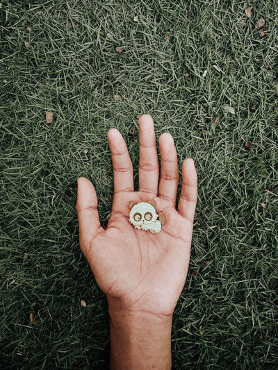 Cropped image of hand holding plant on field