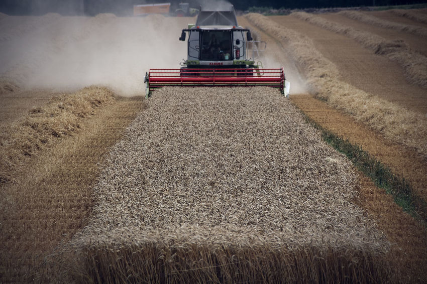 Lines Smoke Agricultural Machinery Agriculture Cereal Plant Combine Combine Harvester Crops Day Field Harvest Hay Machinery Nature No People Outdoors Plowed Field Reap Rural Scene Transportation