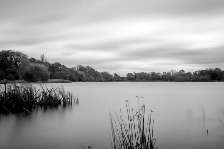 Landscape with lake on overcast day