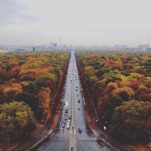 High Angle View Of Wet Road Amidst Autumn Trees In City