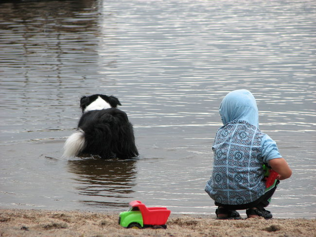 Boy Boy And Dog Child Dog Lake One Person Outdoors People Playing With The Animals Rear View Summerfun Water Waterfront