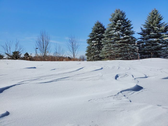 Snow covered field by trees against sky
