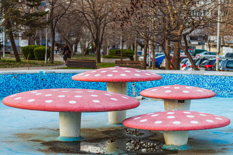 Fountain Public Fountain Mushroom Art Street Street Photography Mushrooms Red Blue Bulgaria Outside Fountain Plaza Red And Blue Public Parks Outdoors Park Streets Burgas  Tree Fungus Plant Day Nature Vegetable Focus On Foreground No People Food Growth Close-up Land Freshness Park - Man Made Space Seat Beauty In Nature Toadstool EyeEm Best Shots The Street Photographer - 2019 EyeEm Awards