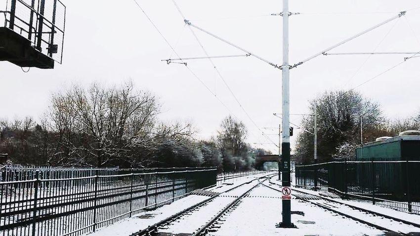 snow Instapic #instaphoto #instalike #instafollow #follow4follow #like4like #tagsforlikes #tags4likes #asian #philippines #australia #paris #london #uk #usa #ksa #uae #foodstagram Foodgasm Foodporn dBigbanggMoodyyBlackk