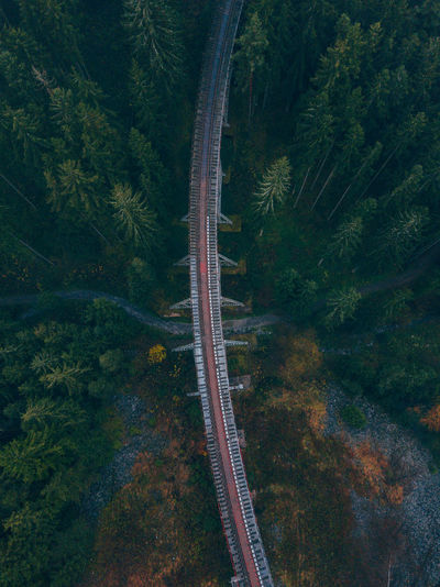 Ziemesthalbrücke Germany Aerial Shot EyeEmNewHere Nature Railroad Track Tranquility Trees Wanderlust Aerial View Bridge Day Dronephotography Forest High Angle View Mountain Nature No People Outdoor Photography Outdoors Pine Woodland Pinetrees River Road Scenics Transportation Tree Perspectives On Nature