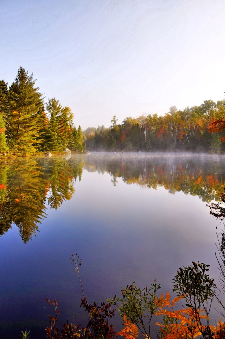 reflection, water, lake, tranquil scene, nature, tree, autumn, beauty in nature, tranquility, scenics, outdoors, standing water, no people, change, day, sky, leaf
