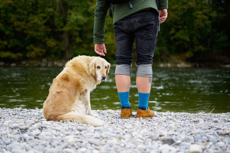 Humans best friend. Friends Hiking Adult Animal Themes Day Dog Domestic Animals Golden Retriever Human Body Part Human Leg Humans Best Friend Lake Low Section Mammal Nature One Animal One Person Outdoor Outdoors People Pets Real People Retriever Standing Water Fresh On Market 2018
