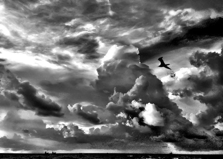 Art of Clouds