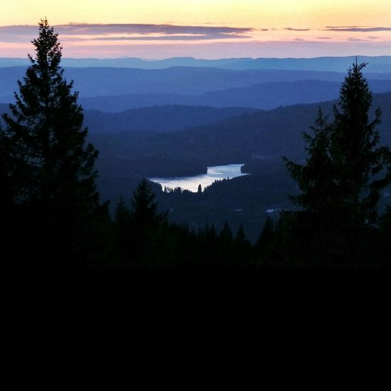 Tryvann Oslo Landscape_Collection Landscape Nature Sunset Sunset_collection Nightphotography Forrest Norway