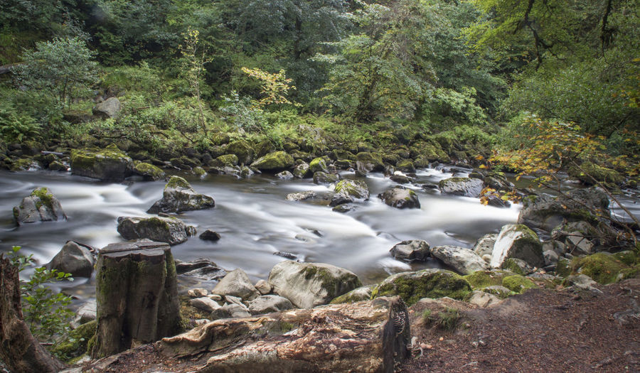 Water Nature Beauty In Nature Motion Tree Outdoors Waterfall Long Exposure No People Scenics Day River Tranquility Sky Scotland 💕 Scotland Forestwalk Forest Photography River View Riverside River Collection Riverside Photography River