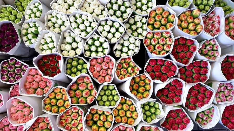 Blumen Colourful Colour Flower Market Hong Kong Flowermarket Blumenmarkt Flower Flowers HongKong ASIA Travellover Travel Photography Close-up Variation Travel I Love Travel Flower Head Flower Collection Freshness Large Group Of Objects High Angle View Full Frame Pupparazzi Traveling Reisen Ist Meine Medizin Perspectives On Nature Business Stories