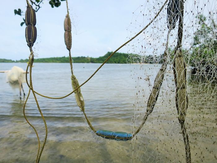 untangling nets by the shore Beauty In Nature Close-up Fishing Net Fishing Nets Fishing Nets And Water Hanging Net Nets No People Outdoor Photography Tangle Tangled Untangle Water