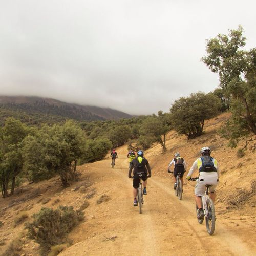 Bicycle Atlas Atlas Mountain Bicicleta De Montaña Bike Mountain Bike Mountain Biking MTB MTB ADVENTURE Alternative Fitness