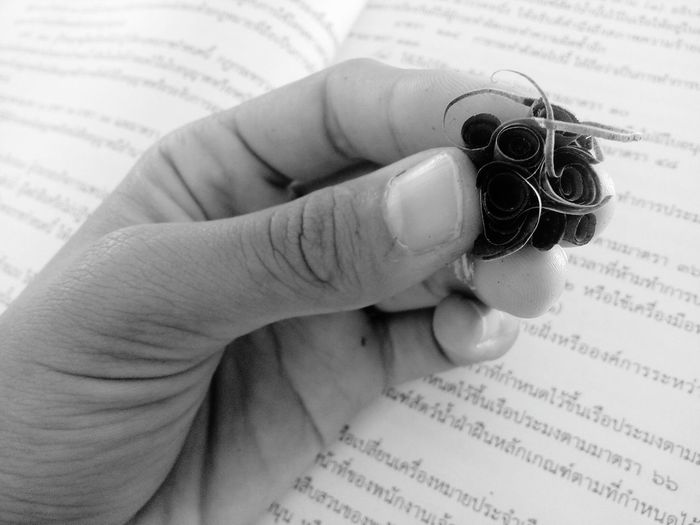 Cropped Hand Holding Pencil Shavings On Book