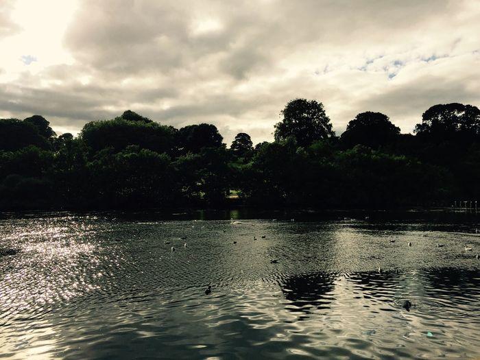 Noir Lake