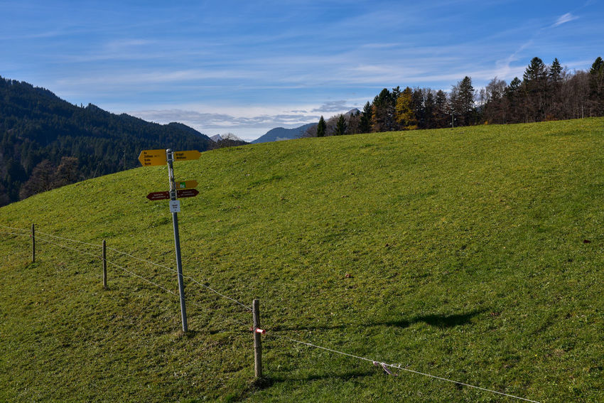 Rheintaler Höhenweg Farmland Grass Marker Nature Blue Sky Clouds Farmland Countryside Farmlandscape Gams Guidepost Signpost Sky Switzerland