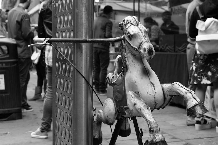 Horse Toy On Roadside