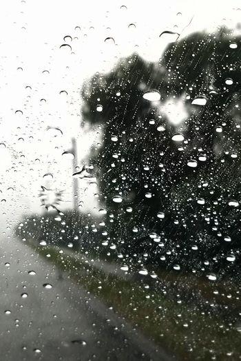 When darkness falls Rain Drop Randomness Window Art Passenger Oppurtunity Darkness And Light