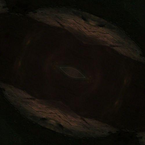 Reptile Crocodile African Elephant Leopard Safari Animals Close-up Dinosaur Animal Scale Extinct Animal Skeleton Camouflage Chameleon Prehistoric Era Animal Skin Paleontology Snake Animal Skull Evolution  Iguana Skeleton Bone  Madagascar  Alligator Animal Bone Lizard Skull Tiger Tortoise Shell Fossil