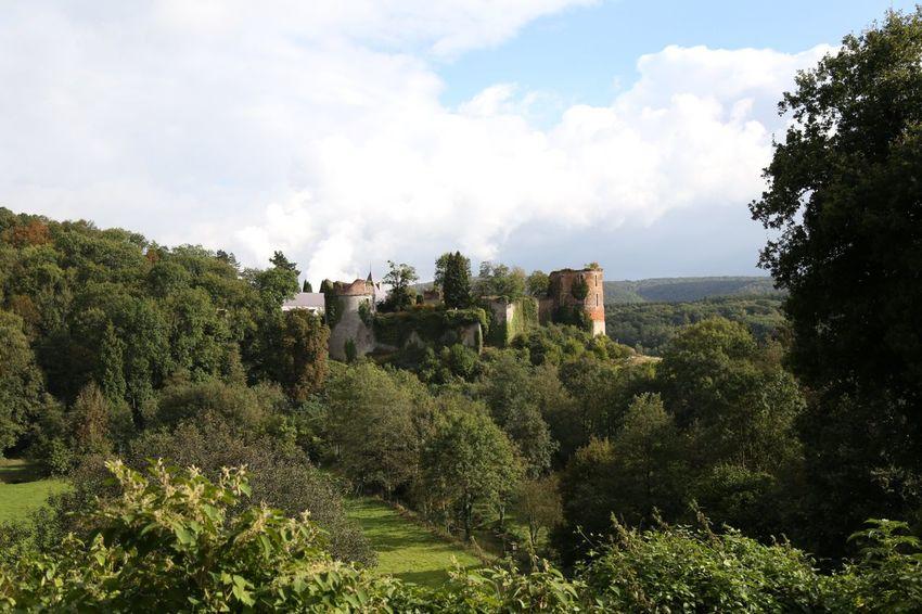 Castle Green Color Ruins Wide Shot Landscape Belgium France