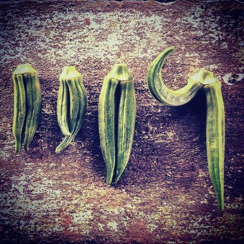 Bhendi mutation :-D Okra Ladiesfinger Farm Produce Organic Food Twin Mutation Veggies Green India