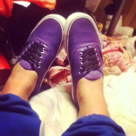 Quince Shoes ; Purple Vans!