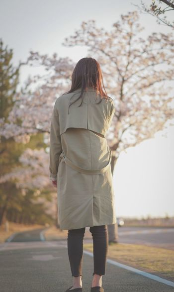 Only Women One Person One Woman Only Long Hair Full Length Outdoors One Young Woman Only Rear View Standing Day South Korea