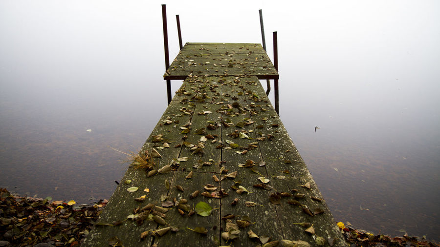 Autumn leaves on pier over lake