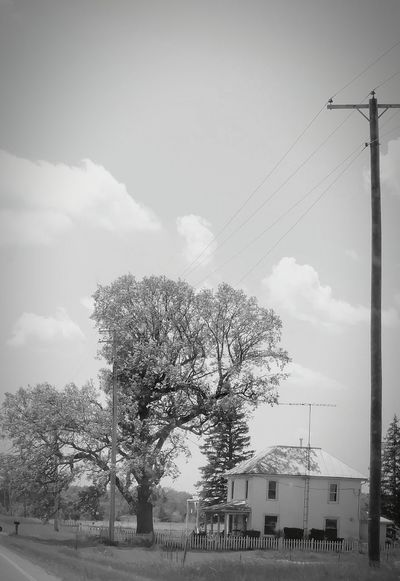 Lone House Lone Tree Grass White Houses In Landscape Lonely Black & White