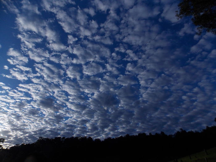 Amazing Sky Atmosphere Clouds Clouds And Sky Cloudy Sky ☁️ Interesting Clouds Nature Photography Nature_collection Strange Clouds Wonderous Nature Wonders Of Nature WondersOfNature
