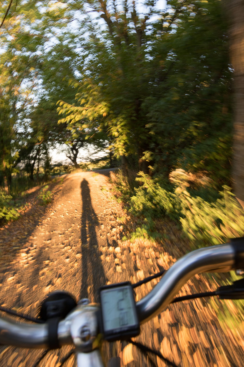 transportation, bicycle, tree, mode of transport, land vehicle, road, day, cycling, side-view mirror, motion, blurred motion, travel, no people, nature, vehicle mirror, outdoors, road trip, motorcycle, close-up