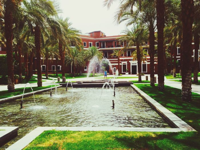 Nice walk in the garden The Most Relaxing Place Enjoying Life Old Cataract Palace Hotel Taking Photos Hello World Nice Atmosphere Breathing Fresh Air Check It Out Beautiful Nature